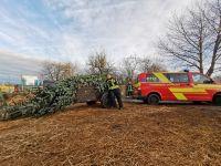 2019-12-08_Feuerwehr-Stammheim_Weihnachtsbaum-2019_Foto_04